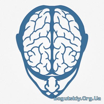 саповский мозг